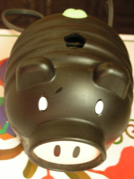 我家的黑豬