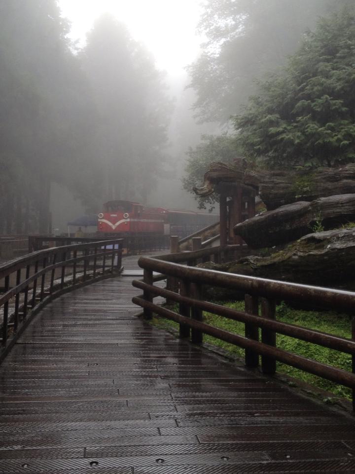 0821阿里山搭小火車.jpg