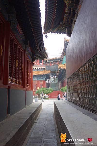 07050705雍和宮、孔廟、國子監 (9).JPG