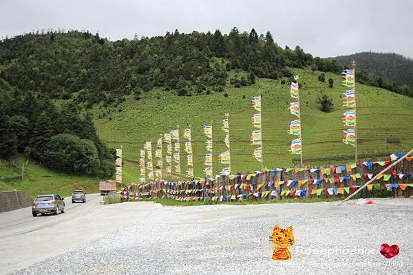 20160718虎跳峽、納帕海 (2).JPG