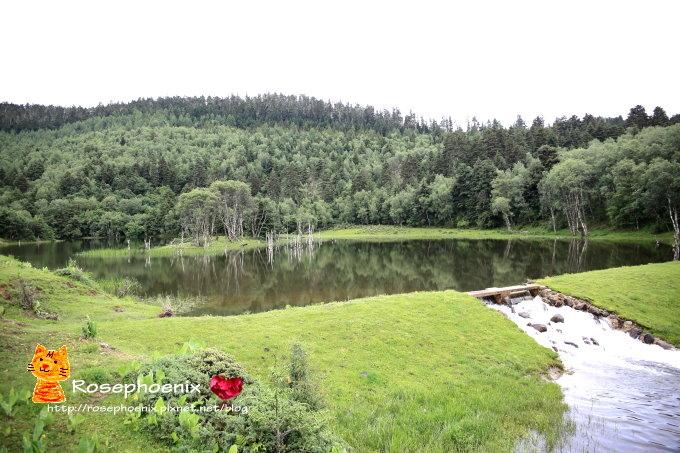 20160719香格里拉-01屬都湖 (6).JPG