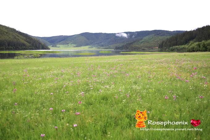 20160719香格里拉-01屬都湖 (17).JPG