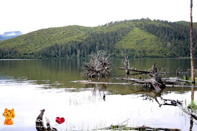 20160719香格里拉-01屬都湖 (26).JPG