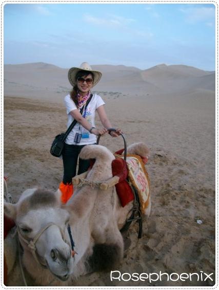 0831-我與不太聽話的駱駝.jpg