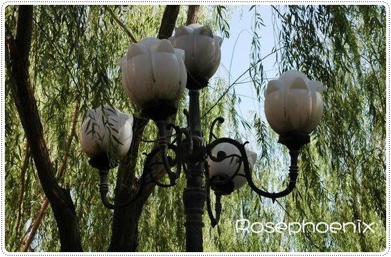0830-大佛寺前的路燈.jpg