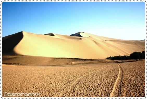 0831-沙漠瀲灩.JPG