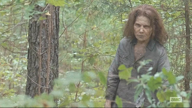 The.Walking.Dead.S06E10.PROPER.720p.HDTV.x264-KILLERS[ettv].mkv_20160223_092342.312.jpg