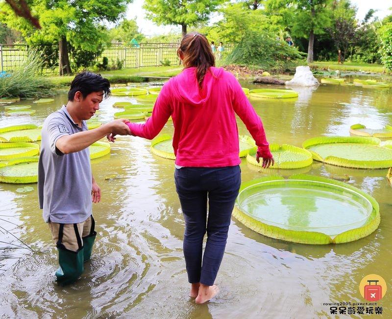 《桃園。遊》蓮荷園休閒農場。體驗乘坐大王蓮花水上飄初體驗 純手工製作的蓮子豆花 讓盛夏感覺身心靈清涼舒暢
