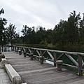 台東森林公園29.jpg