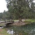 台東森林公園31.jpg