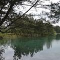台東森林公園34.jpg