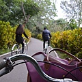 台東森林公園37.jpg