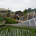 綠色博覽會25.jpg