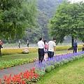 綠色博覽會34.jpg