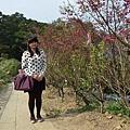 杏花林10.jpg
