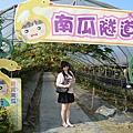 旺山農場41.jpg