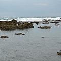 富山護魚區14.jpg