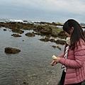 富山護魚區24.jpg