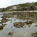 富山護魚區26.jpg