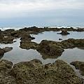 富山護魚區31.jpg