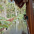 烏林雨林餐廳31.jpg