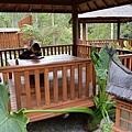 烏林雨林餐廳42.jpg
