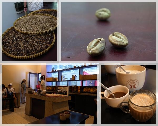 巴里島。黃金咖啡工廠