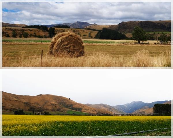 Queenstown-Te Anau 3