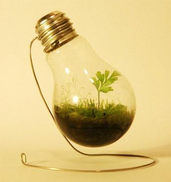 plantpot06.jpg
