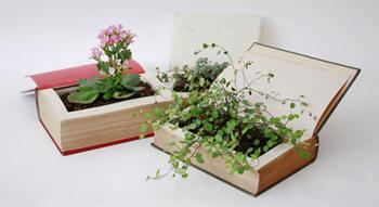 plantpot14.jpg
