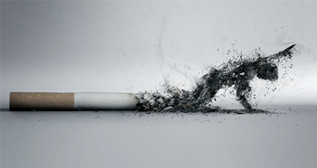 the-smoking-effect-l.jpg