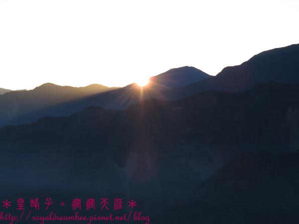 阿里山39.jpg