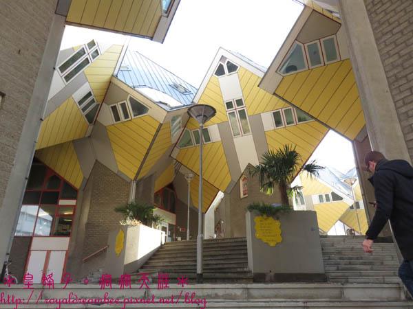 荷蘭鹿特丹方塊屋18.jpg