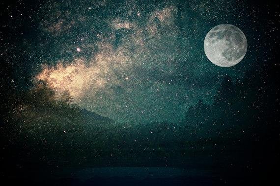 fireflies-2.jpg