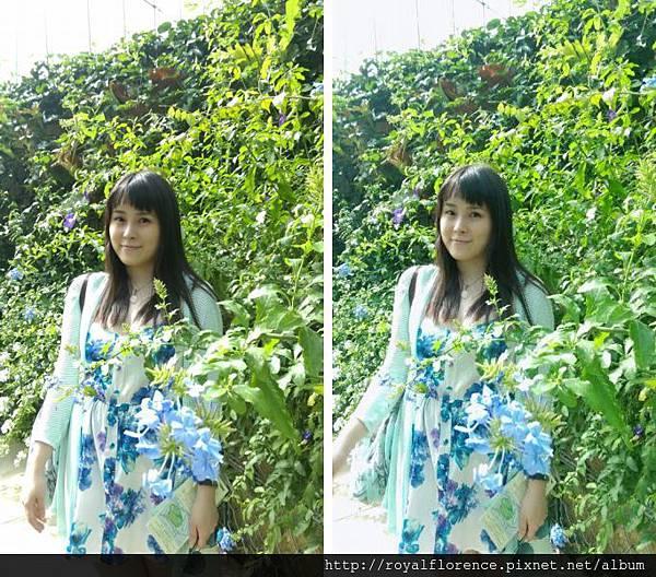 IMAG7802.jpg