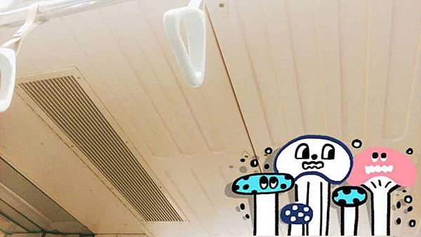 捷運車廂菇2.jpg