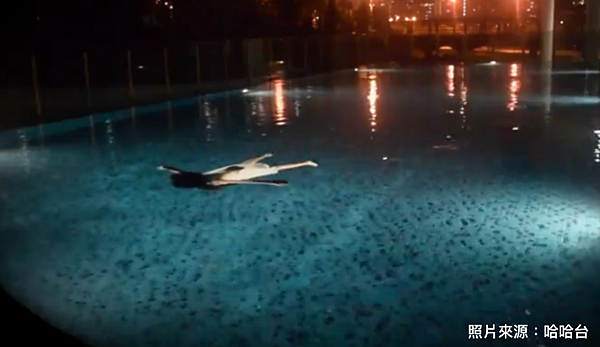 游泳池水鬼.png
