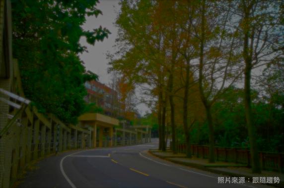 政大_楓香步道_跟隨趨勢.png