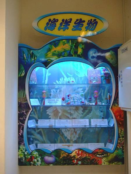 配合館藏特色這邊的展示以海洋生物介紹為主