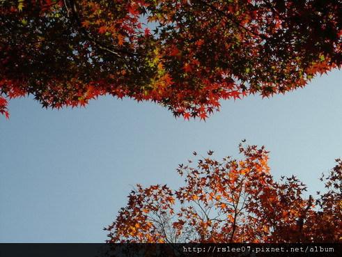 京都DAY2 (1259).jpg