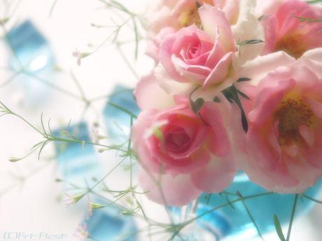 flower042.jpg