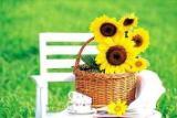 th_flower156.jpg