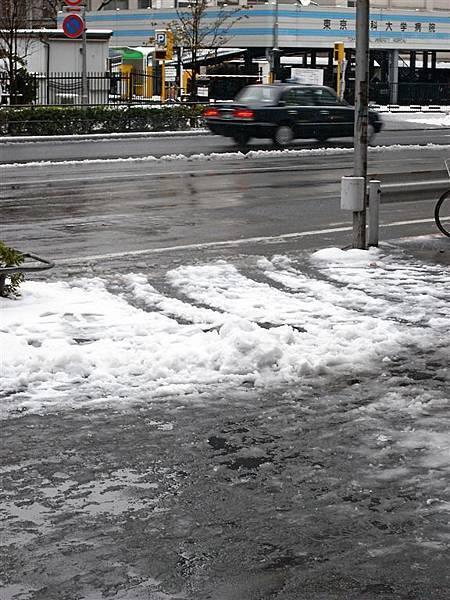 一出站發現地上都積雪了