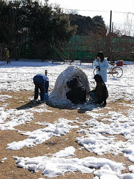 日本人都在堆雪人