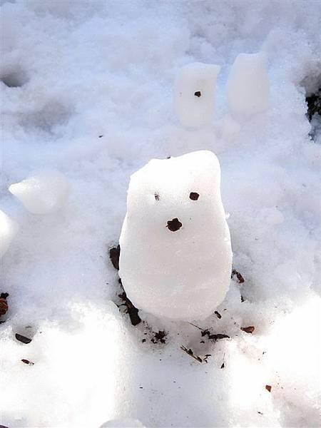 是龍貓雪人