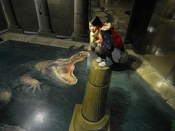 我在逗弄鱷魚