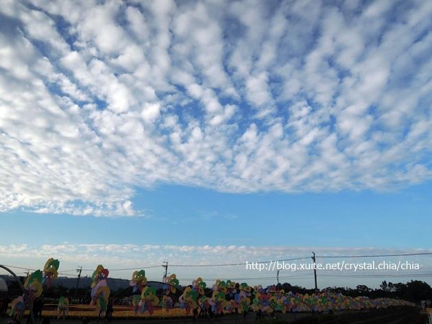 新社薰衣草的天空 (1)