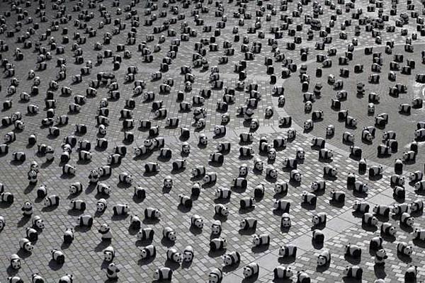 panda-square-1521