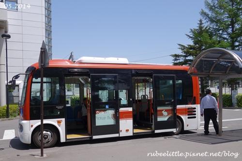 DSC00661-1.jpg