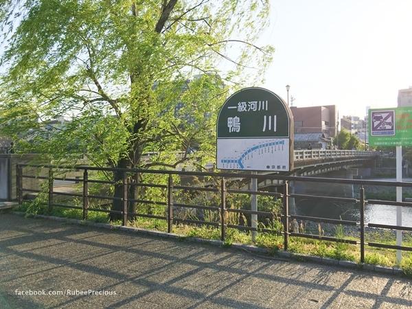 IMG_9647-1.jpg